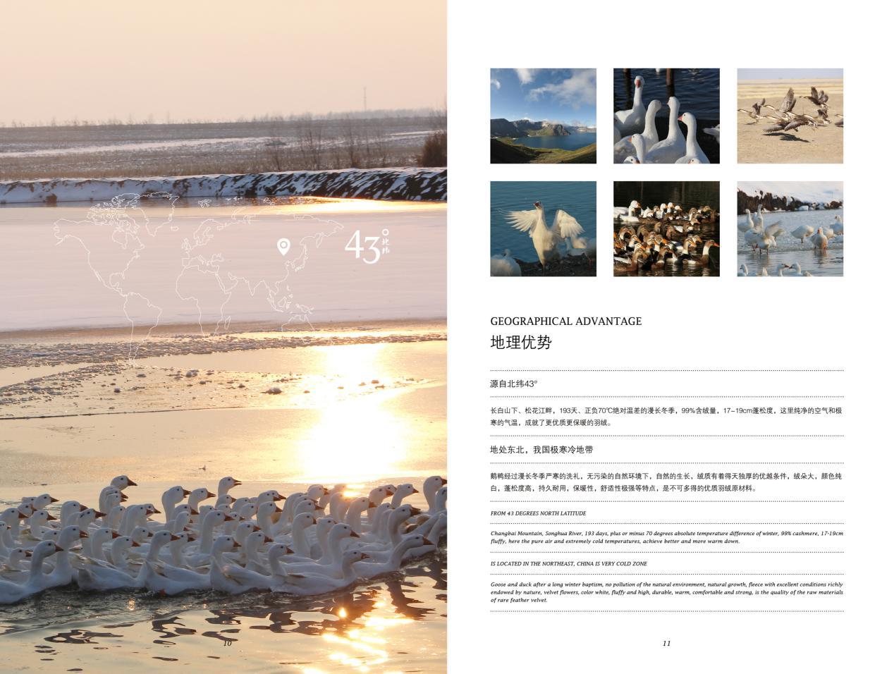 白翎羽绒家纺,采用第一手中国优质羽绒原料打造居家新体验
