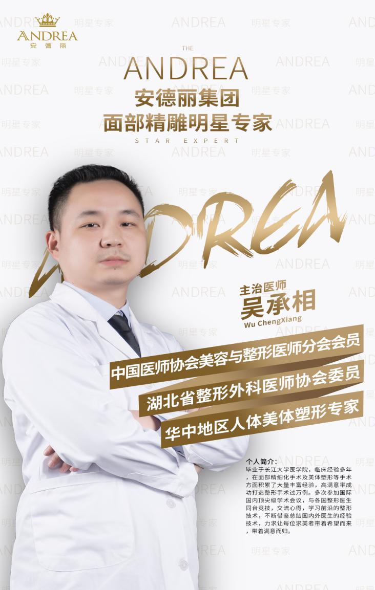 安德丽集团面雕明星专家——吴承相