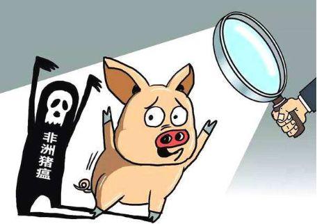 警惕生物安全!非洲猪瘟再现四川,粮运物流护航农牧豆粕安全运输
