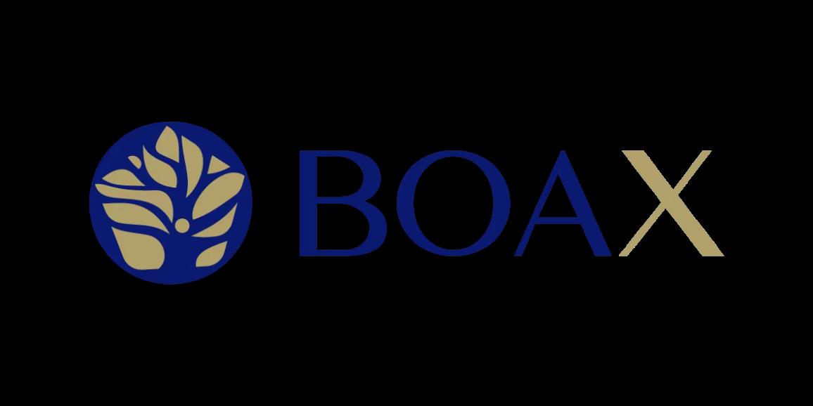 亚银金融集团旗下高端 NFT 交易平台BOAX NFT 隆重上线