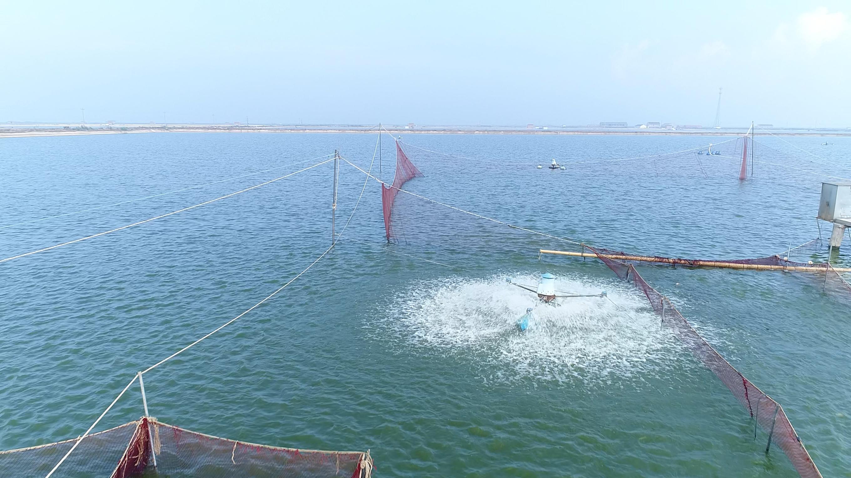移动5G赋能智慧渔业,12000亩鱼塘提档升级